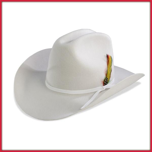 Huge selection of western hats